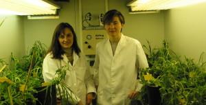 Clean Biotec - Quienes somos