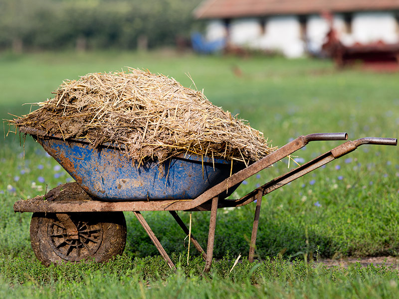 Valorización de residuos ganaderos